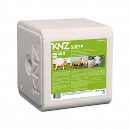Likstenen voor schapen
